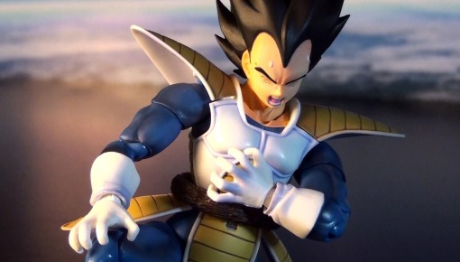 Bandai S H Figuarts Dragon Ball Z Vegeta 4